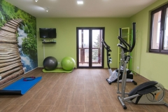 Relax apartmani Tara - fitness room (4)