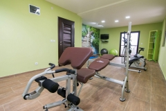 Relax apartmani Tara - fitness room (3)