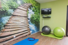 Relax apartmani Tara - fitness room (5)